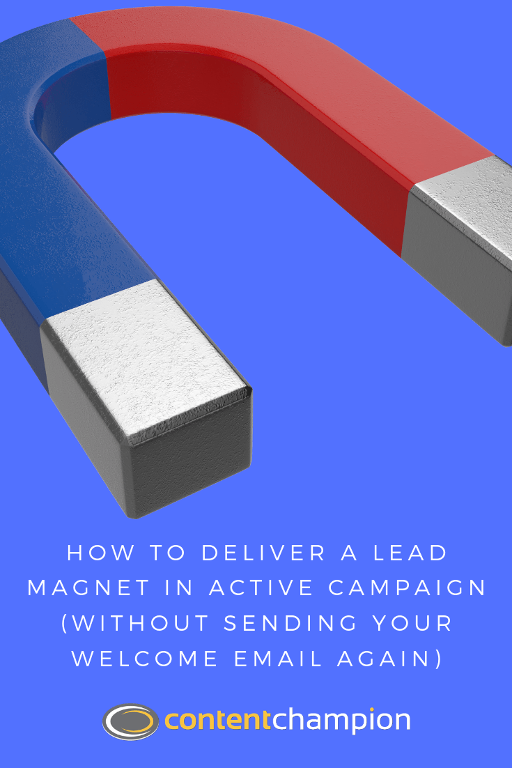 active campaign lead magnets pin